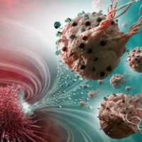 Bacteria coaxed to deliver chemo drugs right inside tumours
