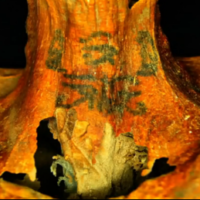 The best ink job in ancient Egypt: Elaborately tattooed mummy brings archeologists to tears