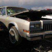 Junkyard Gem: 1988 Dodge Diplomat Salon