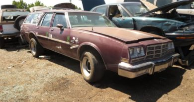 Junkyard Gem: 1983 Buick LeSabre Estate Station Wagon, Rocky Mountain High Edition